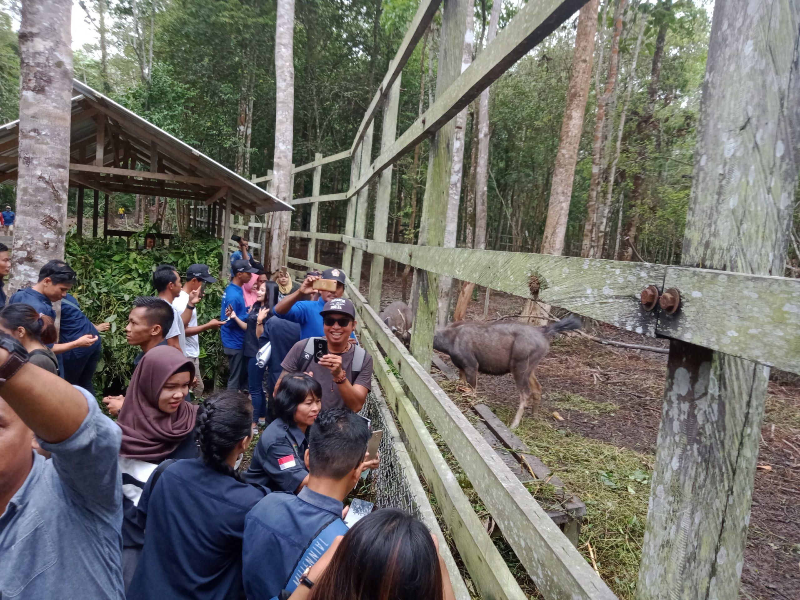 Suasana Peserta BBKT saat kunjungan ke wisata penangkaran Rusa di Nanga Bulik Kabupaten Lamandau